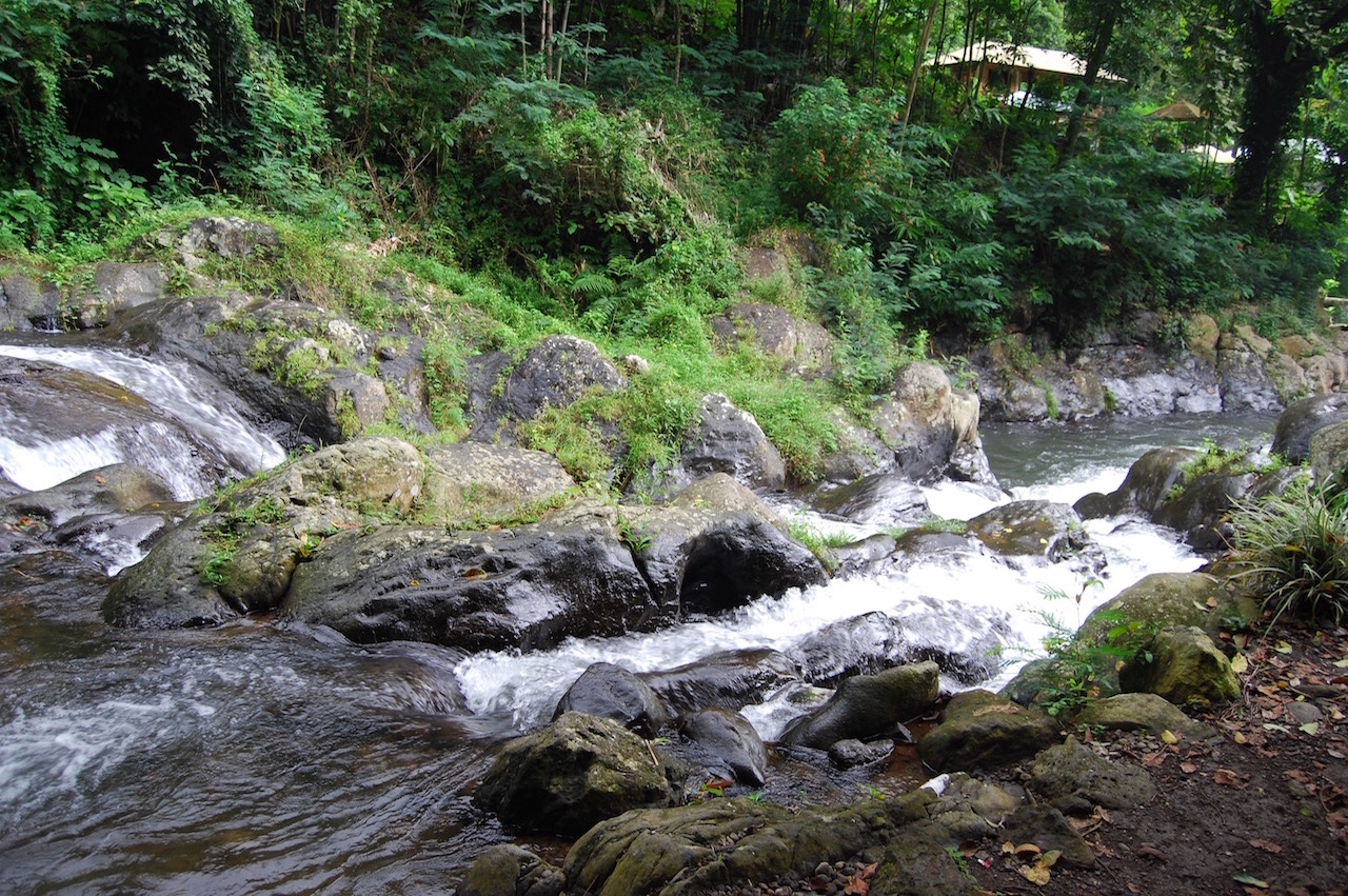 Familiereizen en reizen met kinderen Bali