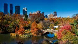 New York herfst stedentrip